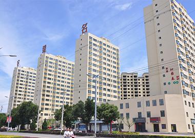 建设中的甘肃宇臻集团公司承建的甘肃宇臻集团陇西物流园1#、2#楼项目(实景拍摄)